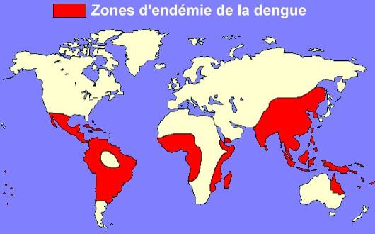 Zone d'endémie de la dengue